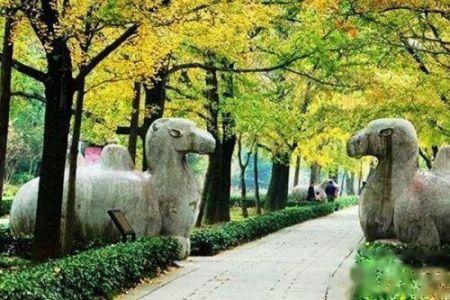 揭秘朱元璋的明孝陵地宫究竟隐藏了什么秘密?